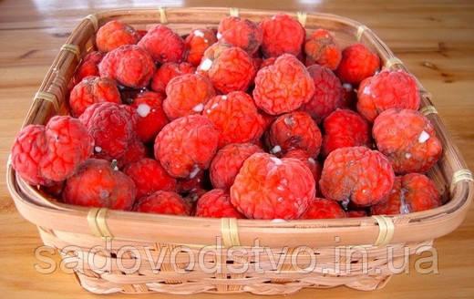 кудрания  плоды