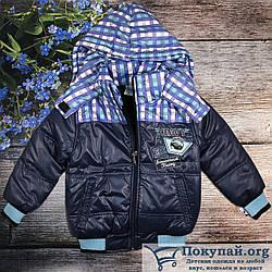 Турецкая куртка с капюшоном Размеры:3,4,5,6 лет (6199)