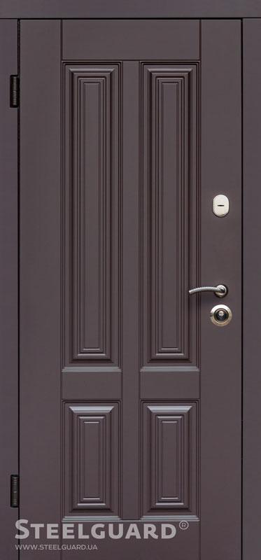 Двери входные Steelguard Balta