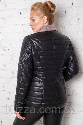 Женская куртка из букле и плащевки 50 - 60рр пудра, фото 2