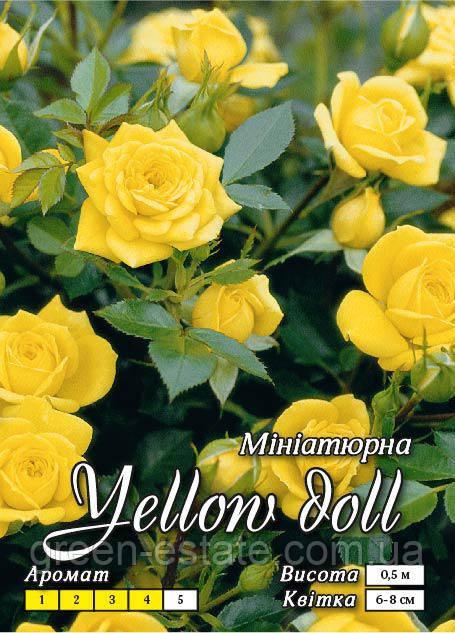Желтая кукла бордюрная класс А, желтая