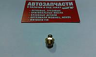 Пресс-масленка М10х1 прямая