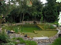 Проектирование и строительство эко-бассейнов, биопрудов (прудов с биологической очисткой воды)