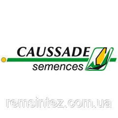 Семена кукурузы Шобби КС (ФАО 210)