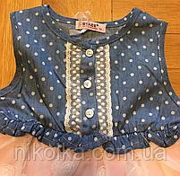 Платье для девочек оптом, Grace,1-5 лет., арт.G80908, фото 4