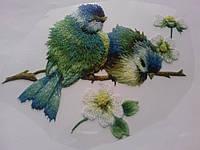 Термоаппликация-накатка птички / 20041