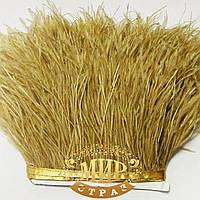 Тесьма страусиная, цвет Golden Tea , цена за  0,5м