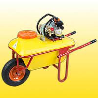 Мотообприскувач бензиновий AgriMotor TPB-256, фото 1
