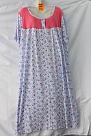 Женский котоновый халат БАТАЛ (р-р 58-66) оптом со склада в Одессе.