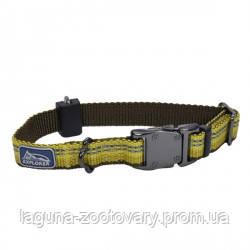Coastal K9 Explorer ошейник для собак, нейлон, 1,6смХ20-30 см, золотарник