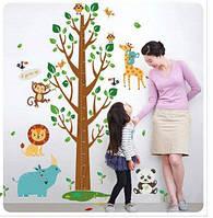 Красивая наклейка на стену для детской Ростомер дерево
