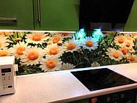 Скинали - цветы ромашки