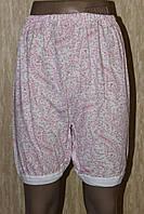 Женские панталоны кулир цветочный принт 100 % хлопок