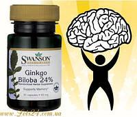 Гинкго Билоба - растительный энергетик и стимулятор мозга