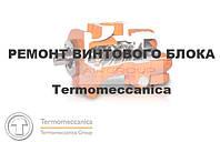 Ремонт винтового блока TERMOMECCANICA
