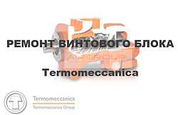 Ремонт гвинтового блоку TERMOMECCANICA