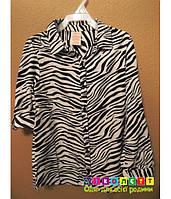 Сорочка-блуза, на дівчинку, принт-зебра Faded Glory
