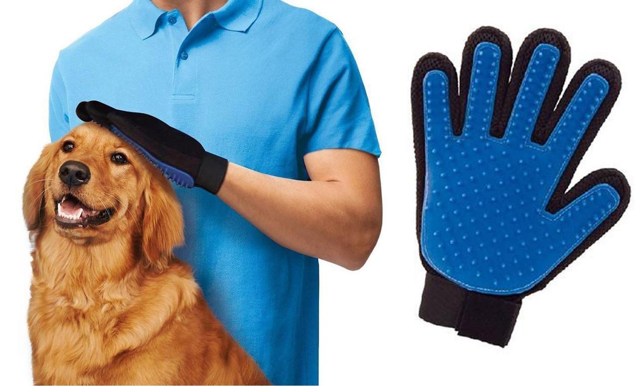 Перчатка из TVрекламы для удаления расчёсывания шерсти Тру тач для вычесывания шерсти кошек и собак True Touch 6