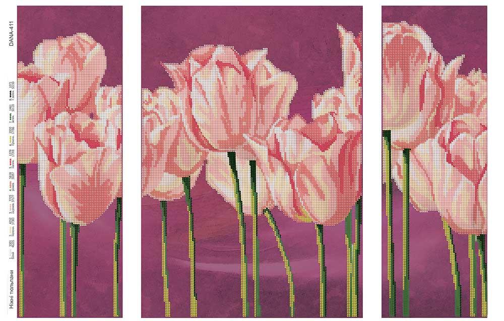 Ніжні тюльпани