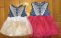 Платье для девочек оптом, Grace, 1-5 лет,  № G80907, фото 1