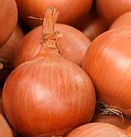 Средний сорт репчатого лука гибрид Банко F1, Syngenta Семена профессиональная упаковка 250 000 семян