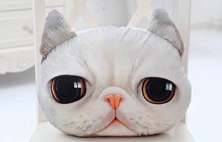 Оригінальна 3D подушка Кіт Жасик