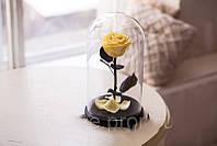 Живая роза в стеклянной колбе Желтый топаз