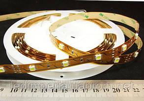 Светодиодная лента 2835-120-IP33-NW-10-12 /C/ (8472)