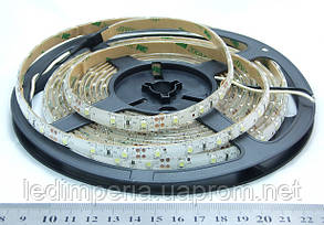 Светодиодная лента S5060-5000-30-UW  -1м (1124) CHINA BRAND