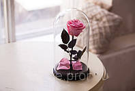 Живая роза в стеклянной колбе Розовый кварц