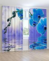 Фотошторы 3D голубая орхидея над водой