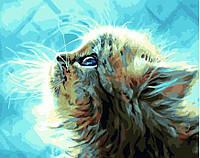 """Набор для рисования """"Голубоглазый котенок"""" [40х50см, Без Коробки]"""