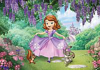 Фотообои бумажные на стену 368x254 см Принцесса София (10425CN), фото 1