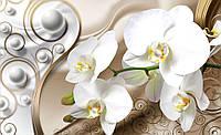 Фотообои цветы 3D 368х254 см Орхидеи и узоры (2952P8)
