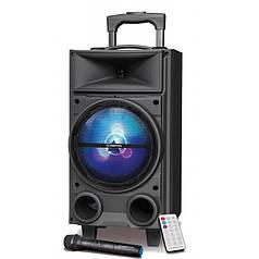 Музыкальная колонка  MANTA SPK5000
