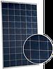 Фотоэлектрический модуль поликристаллический Hanwha Q-Cell Q.Power-G5 6ВВ 270 W - 270 Вт