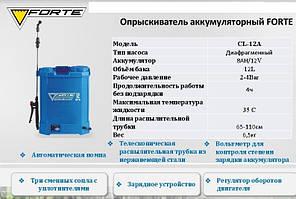 Опрыскиватель аккумуляторный  Forte CL-12A (12 л), фото 3