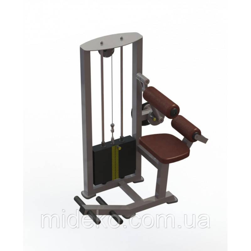 Тренажер для мышц спины