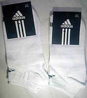 Мужские спорт носки 36-40 Белый