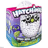 Интерактивная игрушка пингвин HATCHIMALS (ВИДЕО), фото 1