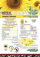 Семена подсолнечника гибрид ИМЕРИЯ КС