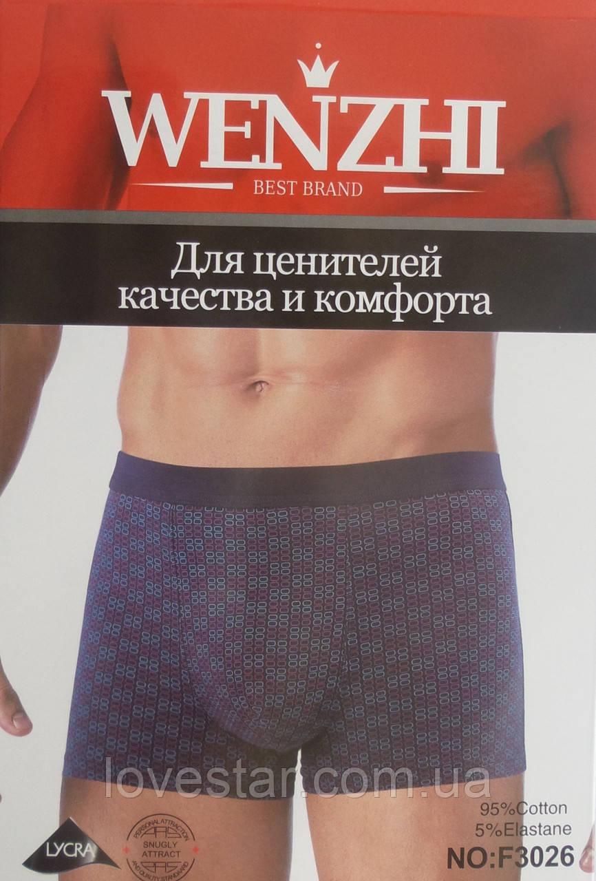 Чоловічі боксери «Wenzhi» L/3XL