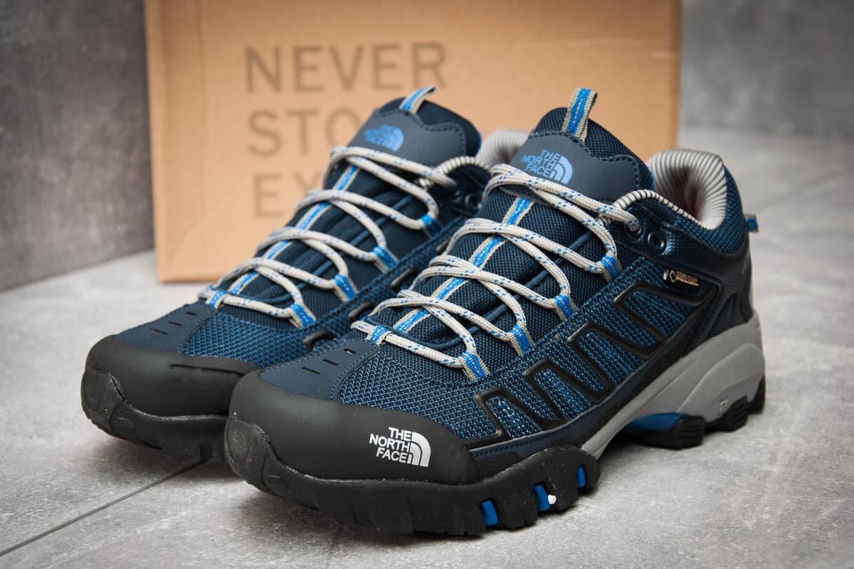 Кроссовки мужские The North Face Ultra 109 GTX, темно-синие (12351), р