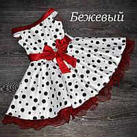 Нарядное  платье в горох для девочки.Стиляги., фото 1