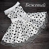 """Ошатне плаття в горох для дівчинки """"Стиляги""""., фото 1"""