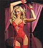 Эротический комплект красный №18
