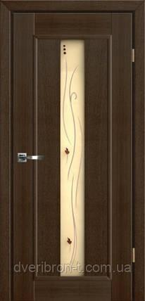 Двери Брама 36.4 дуб венге, фото 2