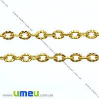 Цепь, Золото, 3х2 мм, 1 м (ZEP-007758)