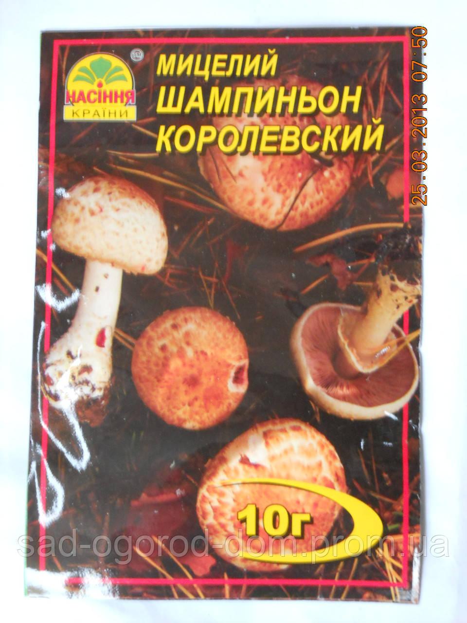 Мицелий Шампиньона Королевского коричневый