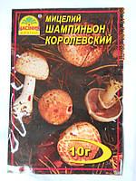 Мицелий Шампиньона Королевского коричневый, фото 1